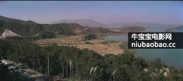 人蛇鼠影片剧照6