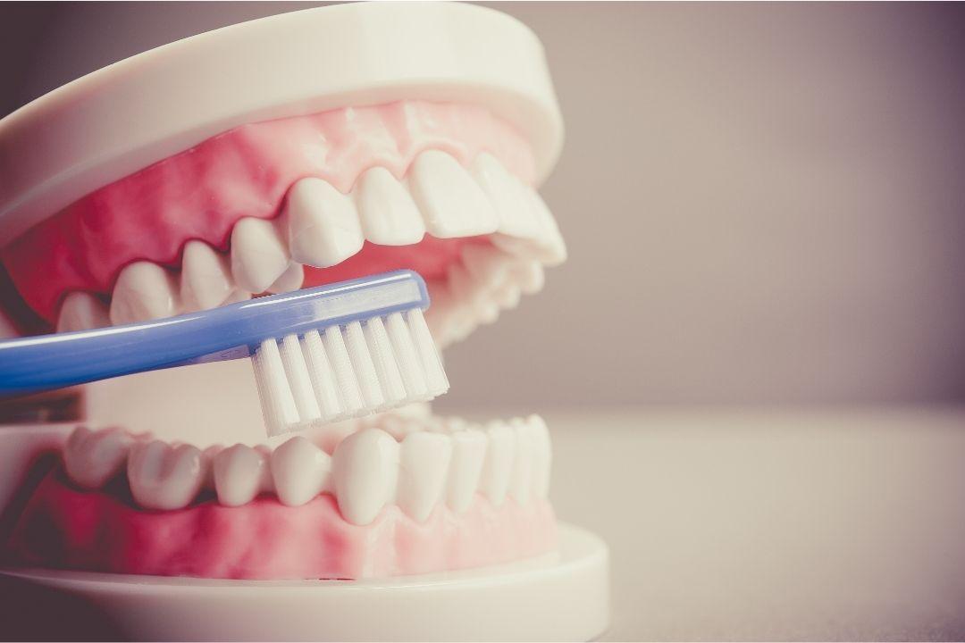 牙博士冲击IPO:口腔生意真不错