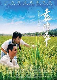 电影《袁隆平》一起观看杂交水稻研究之路