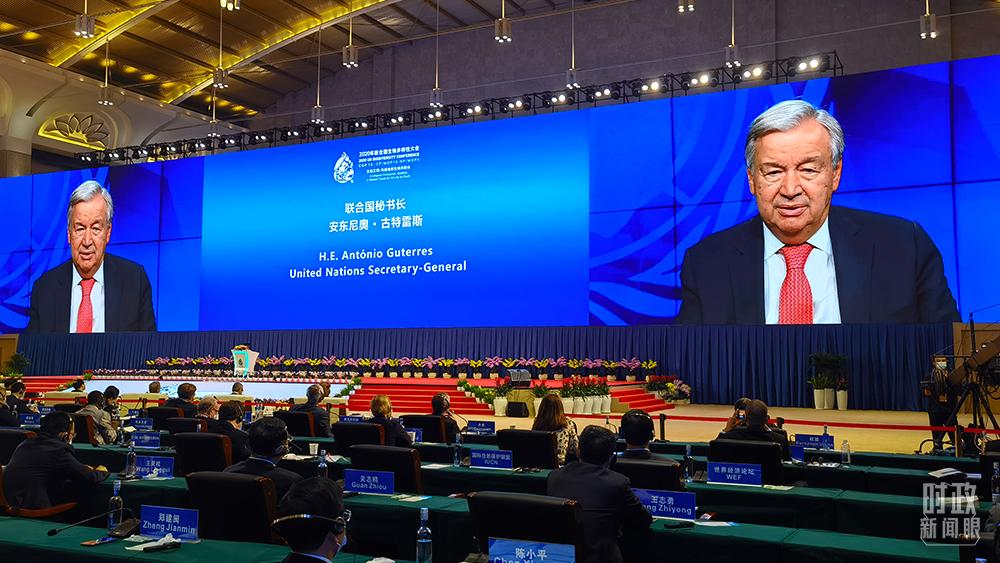 时政新闻眼丨在这场领导人峰会上,习近平阐述生物多样性保护的中国主张