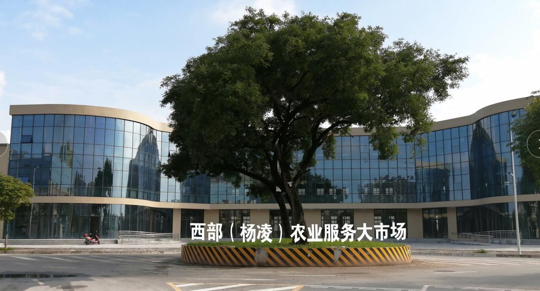 """第28届中国杨凌农高会G区将呈现""""高精特新""""四大亮点"""