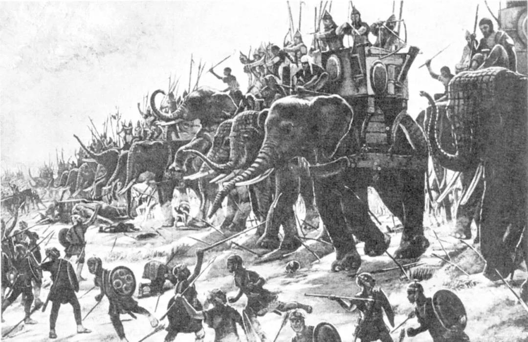 """""""象""""往的生活"""
