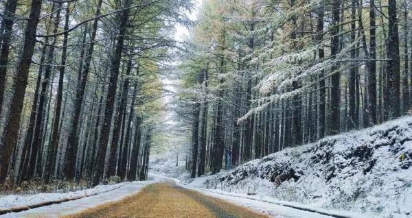 全国多地迎入秋以来第一场雪,广西这些地方有明显降雨……
