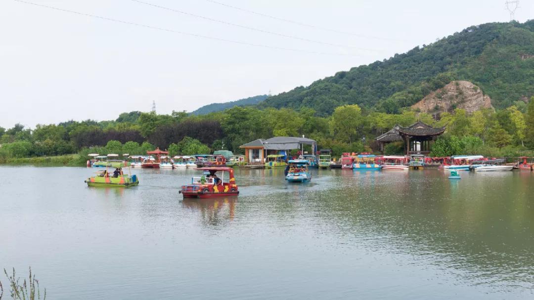 杭州深度游玩指南来了!品茶、游湖、登山...带你解锁多种新玩法