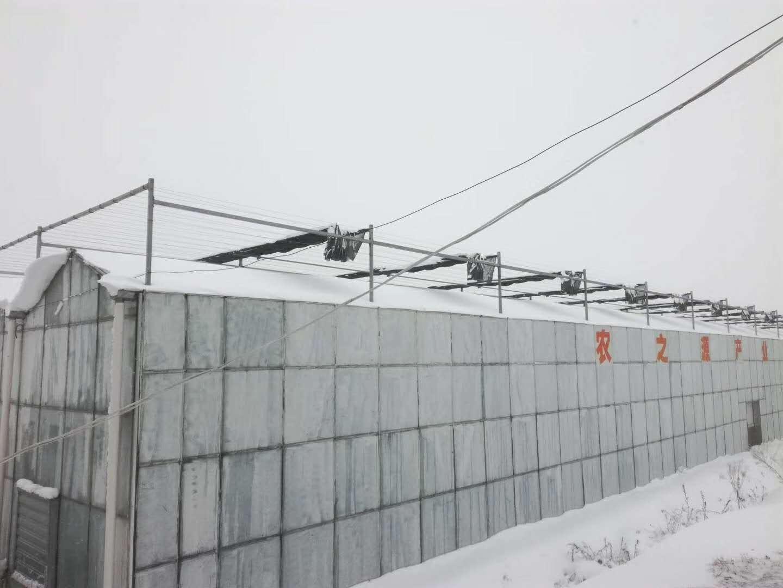 又到北方温室大棚采暖季、连栋温室大棚设计采暖热负荷三要素
