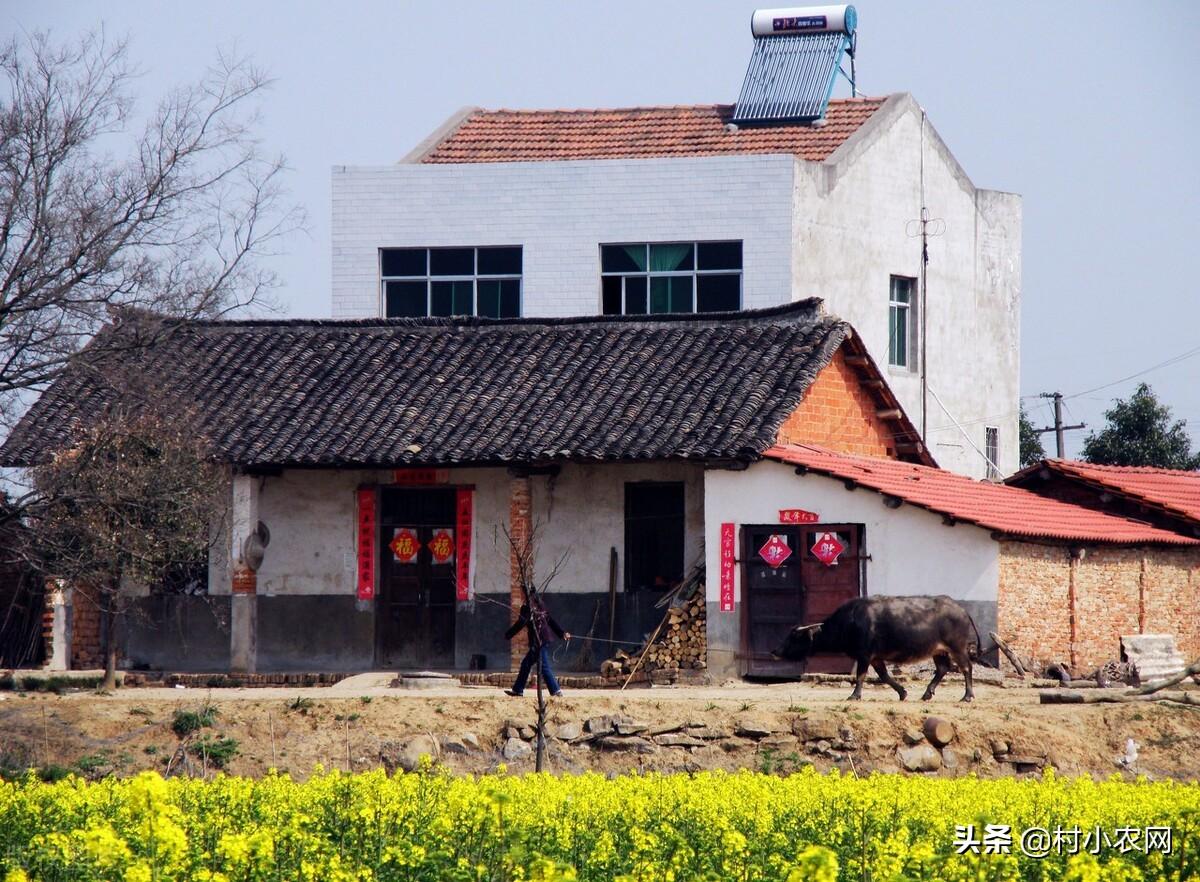 农村创业干啥能快速致富?隐藏在乡镇的45个项目,总有一个适合你