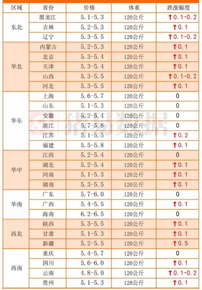 10月12日,猪价6连涨、涅槃重生!3个新变化,猪价上涨稳如磐石?