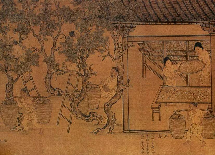 苏轼因为何事,连写了三首乡村生活的词,因为他对生活充满了热爱